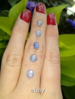 LOT of 5 Rare Natural Blue Star Sapphire Cabochons